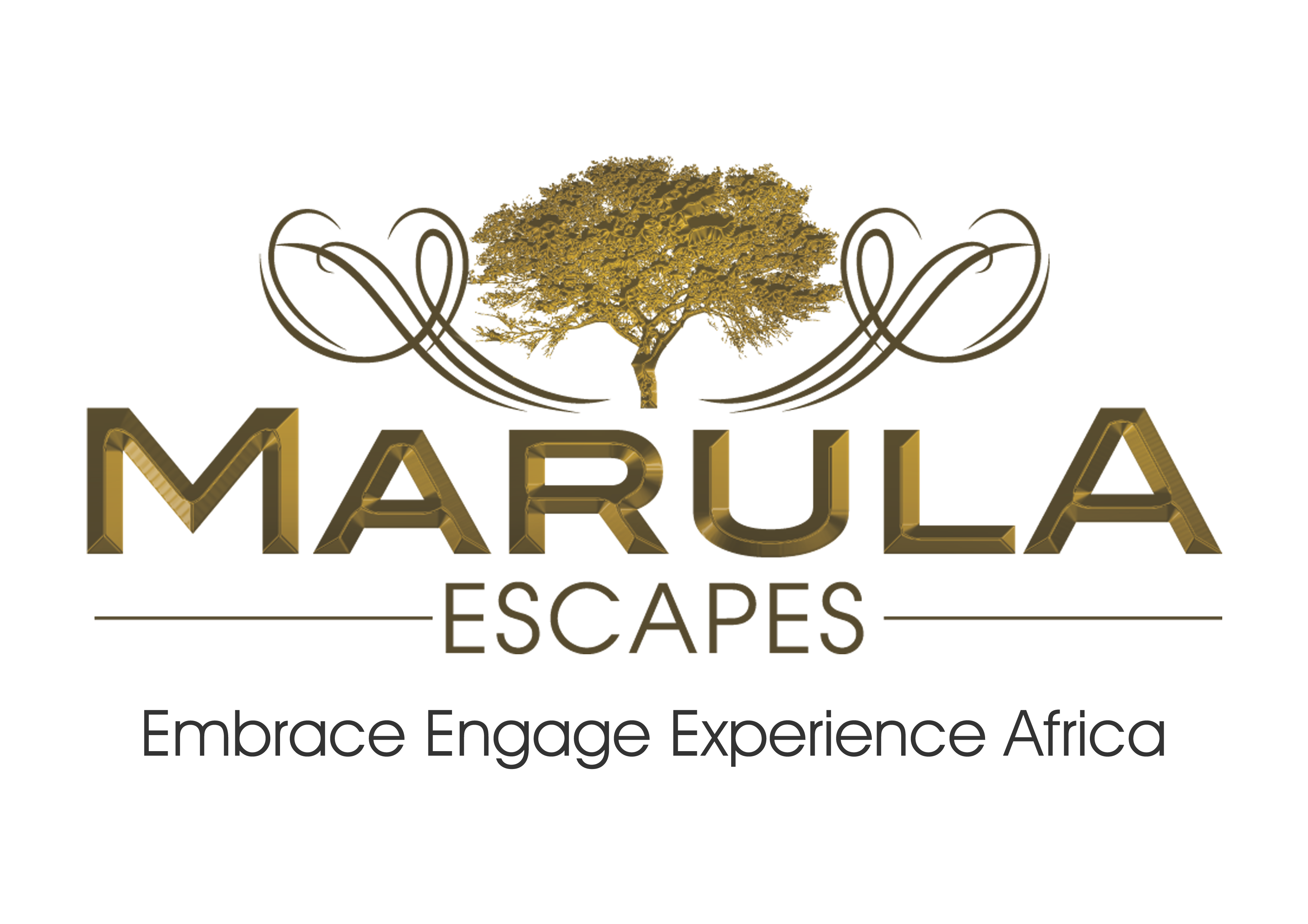 Embrace Engage Experience Africa